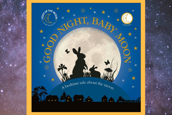 space books for kids good night baby moon
